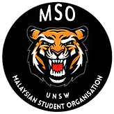MSO UNSW.png