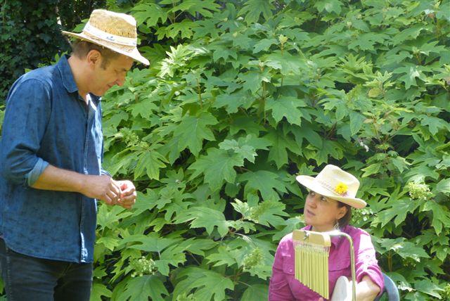 Journée Nationale des Jardins - 2