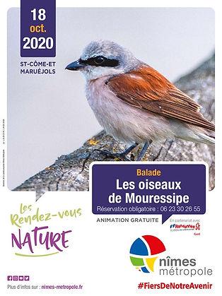 RDV-Nature-Affiche-18-octobre-2020-pt.jp