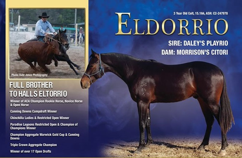 Eldorrio-According-ad-2020 - Copy.jpg