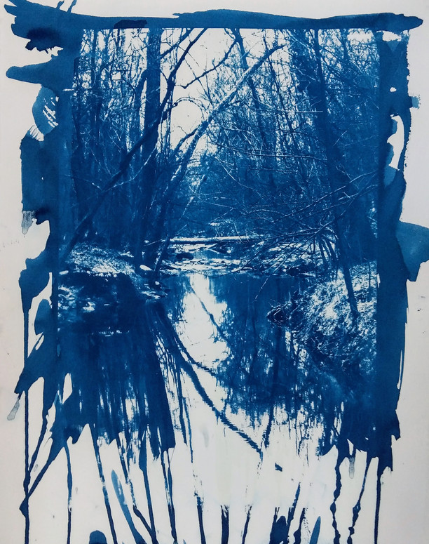"""""""Blue World"""" Cyanotype  - Published in Colonnades Art and Literary Magazine"""