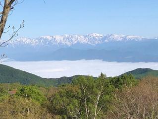 新緑と雲海のむこうにアルプス