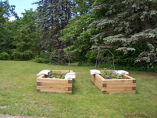 Raised Beds at HH.jpg