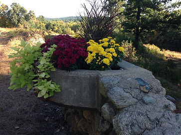 horse trough in Fall.jpg