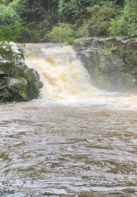 Gardners Falls Maleny in Full Flight after Rains