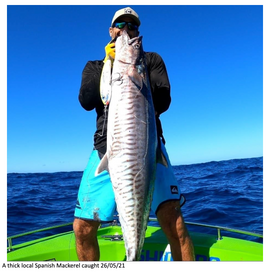 BRIBIE ISLAND OFFSHORE FISHING REPORT MAY 2021