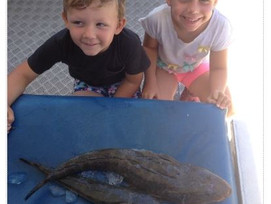 February 2019 Fishing Report – The Island and Surrounds