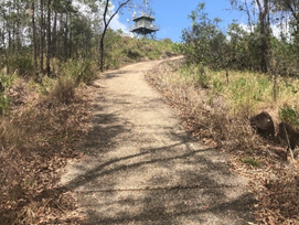 Mt Beerburrum A Steep Step For Anyone