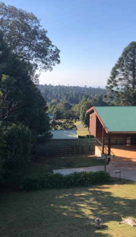 Time to Book Your Winter Getaway at the Bunya Mountains