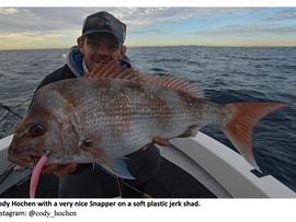 BRIBIE ISLAND OFFSHORE FISHING REPORT JUNE 2021