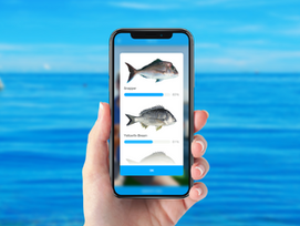 Real 'grunt' behind new Fisheries apps