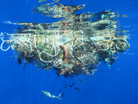 World Ocean Day on June 8, A Plastic Infested Ocean