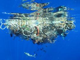 World Ocean Day on June 8,A Plastic Infested Ocean