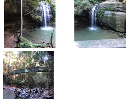 Day Trip to Buderim Sure To Surprise