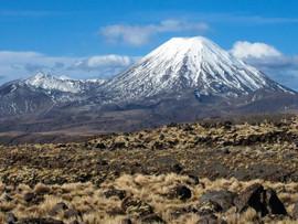NEW ZEALAND PART 2 –NORTH ISLAND