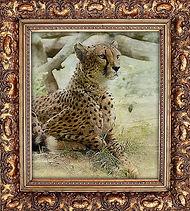 picture-art-wood-frame-retro-baguette-ja