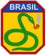 simbolo-forca-expedicionaria-brasileira-