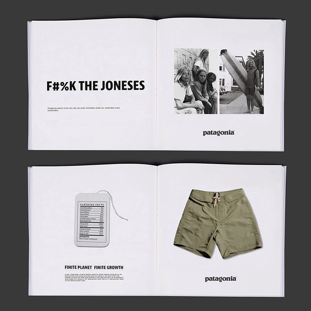 Patagonia, design and concept pitch zine, eco nomics, finite planet -finite growth.