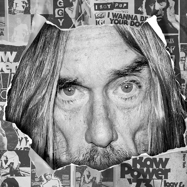 Iggy Pop x LAB (Billabong) Concept, Direct and design Campaign / Catalogue.