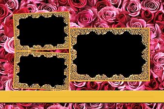 Pink Reoses & Gold Frames.png
