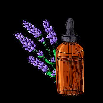 Vektor Öl Flasche Lavendel.png