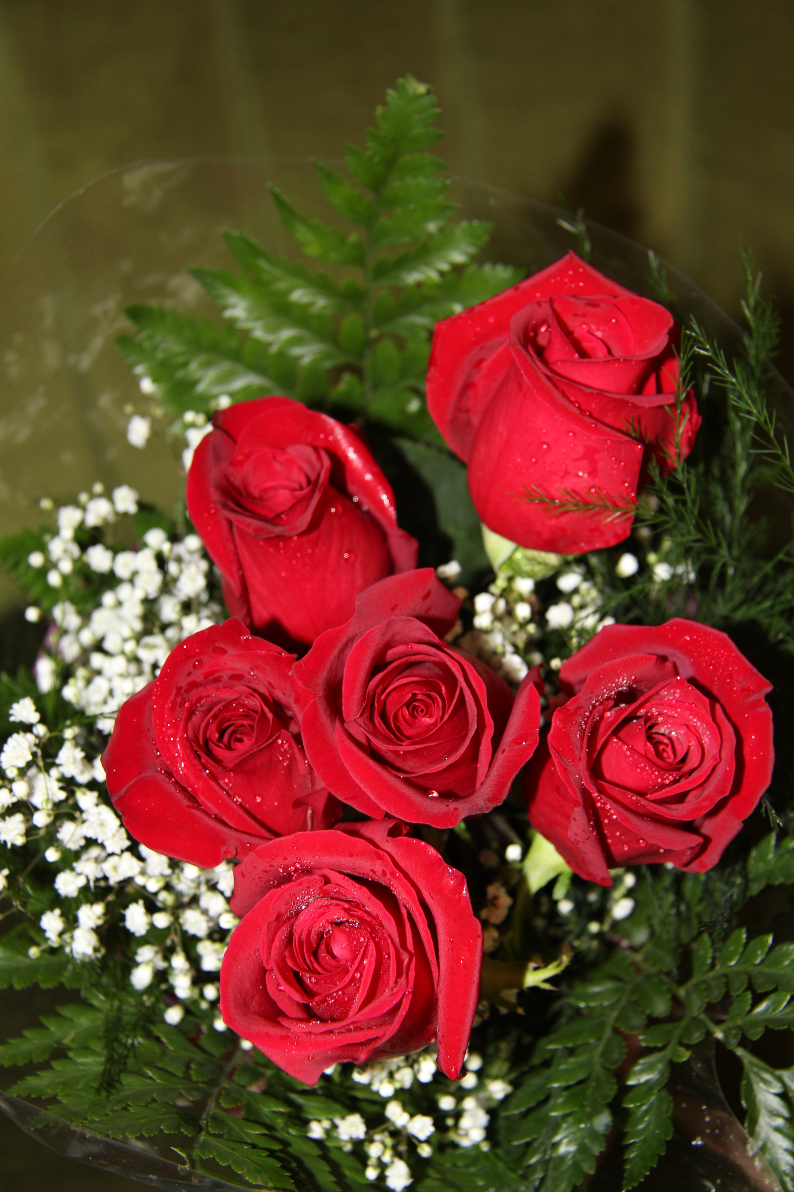 6 Roses Wrapped