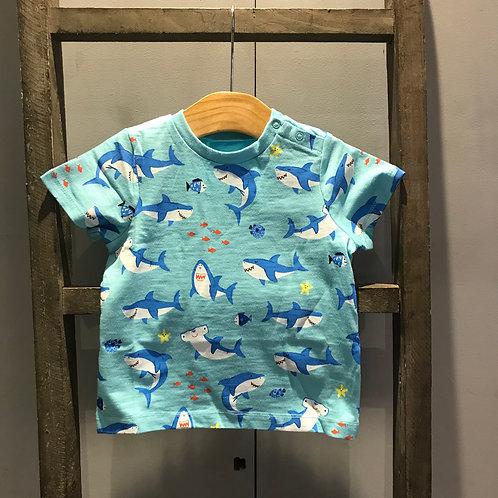 Hatley: shark Graphic T.Shirt