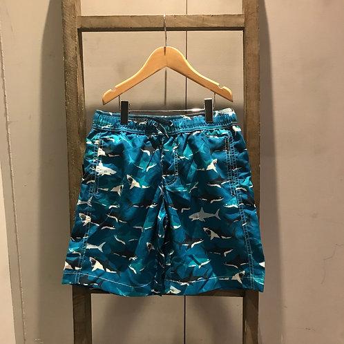 Hatley: Swimwear - Blue Shark