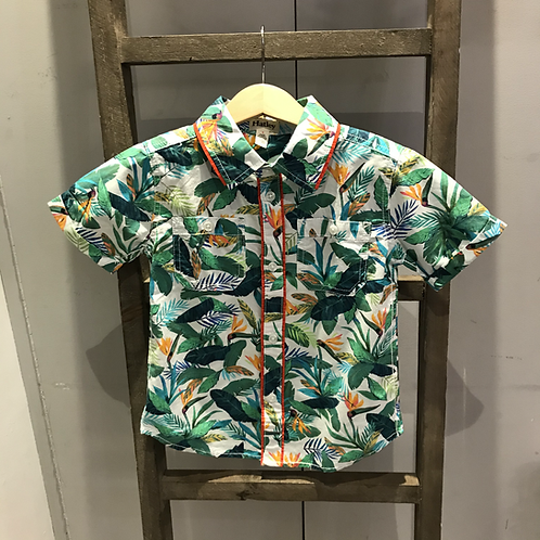 Hatley: PK1324 - Paradise Print Shirt