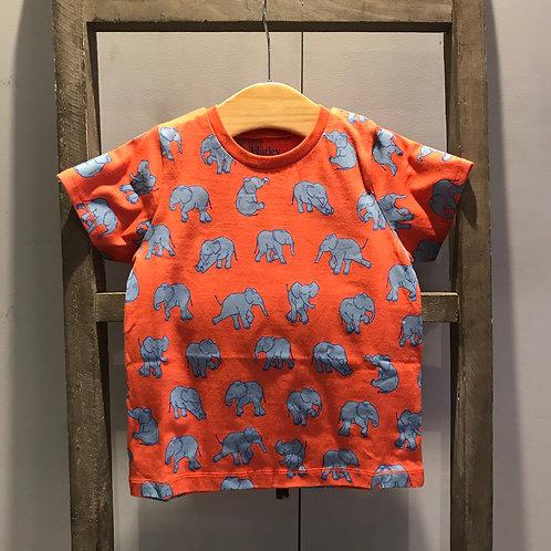 Hatley: Elephant T.Shirt - Orange