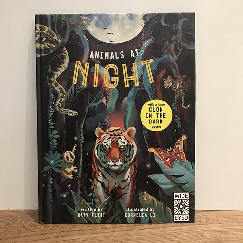 Katy Flint: Animals at Night Book