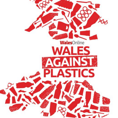 There is time to stop plastics wrecking Wales