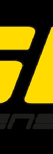 ST Logo-01.png