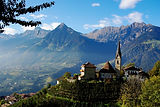 Alto-Adige-Vineyards.jpg