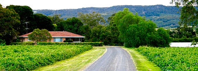 Bauer's Organic Farm, Lockyer Valley