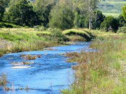 Blackfellow Creek