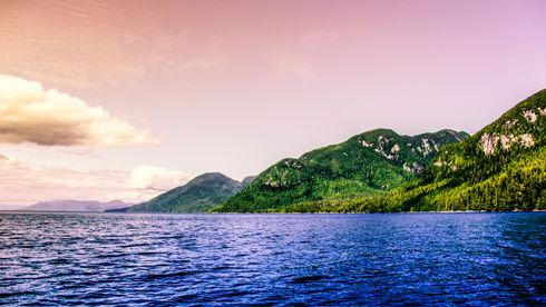 The hills of British Columbia
