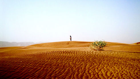 The Arabian Desert in the UAE