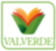 log valverde-15.png