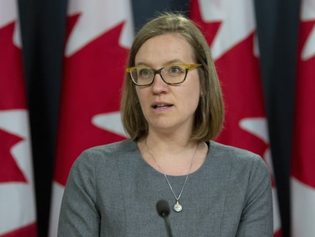 Canada to contribute $485M to help developing countries cope with COVID-19