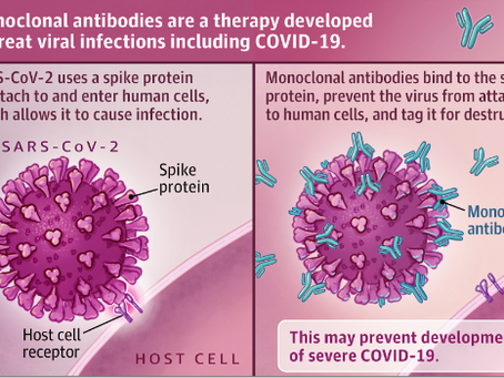 The Monoclonal Antibodies for COVID