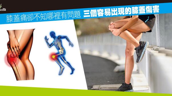 膝蓋痛卻不知哪裡有問題 三個容易出現的膝蓋傷害