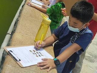 8/18 Grade 3 Hand-on Activity
