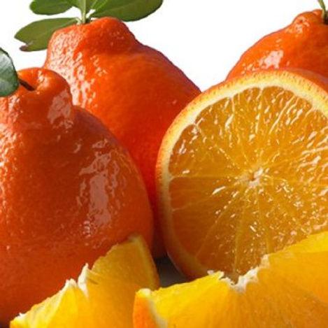 Citrus - Oranges and Grapefruit