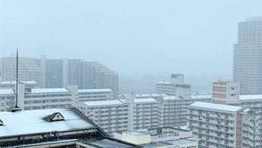 3月下旬の雪模様