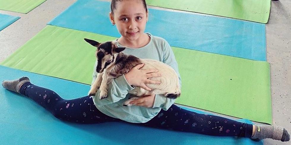 Goat Yoga - Kids