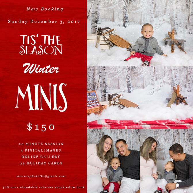 Tis the Season Winter Minis