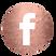 Facebook ICON.tif