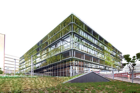 Ecology and social performance the building core