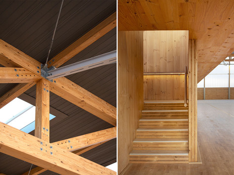 Project details. Use of Cross laminated timber and light as project resources